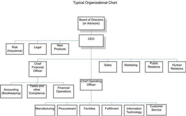 Organizational and Nonprofit Management what is a top?
